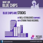 What are blue chips-infograph